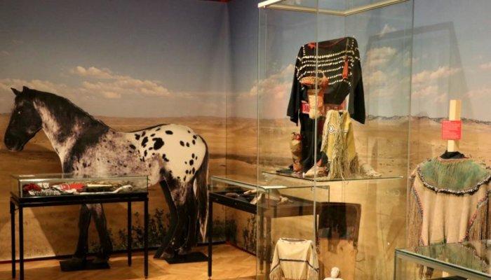 5195 V Narodni Muzeum Indiani 16