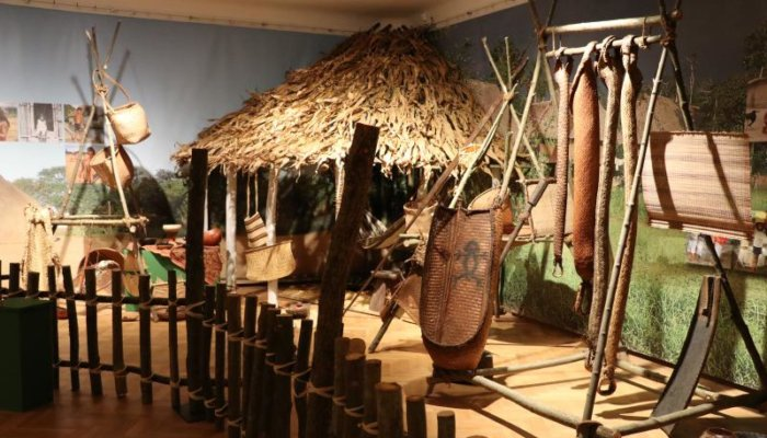5199 V Narodni Muzeum Indiani 39