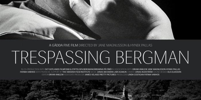 Trespassing Bergman Plakát