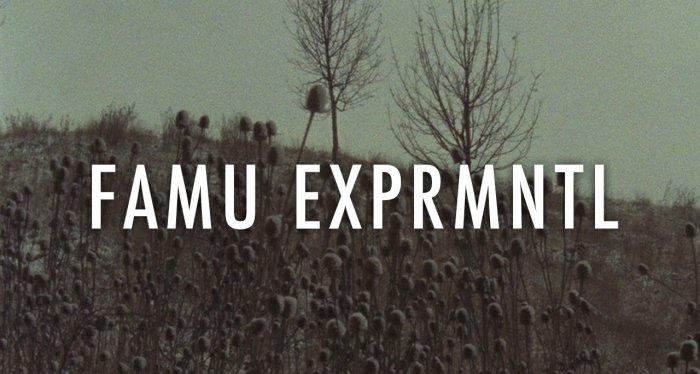 Letní Kino Na Pragovce Pokračuje Přehlídkou Experimentálních Filmů