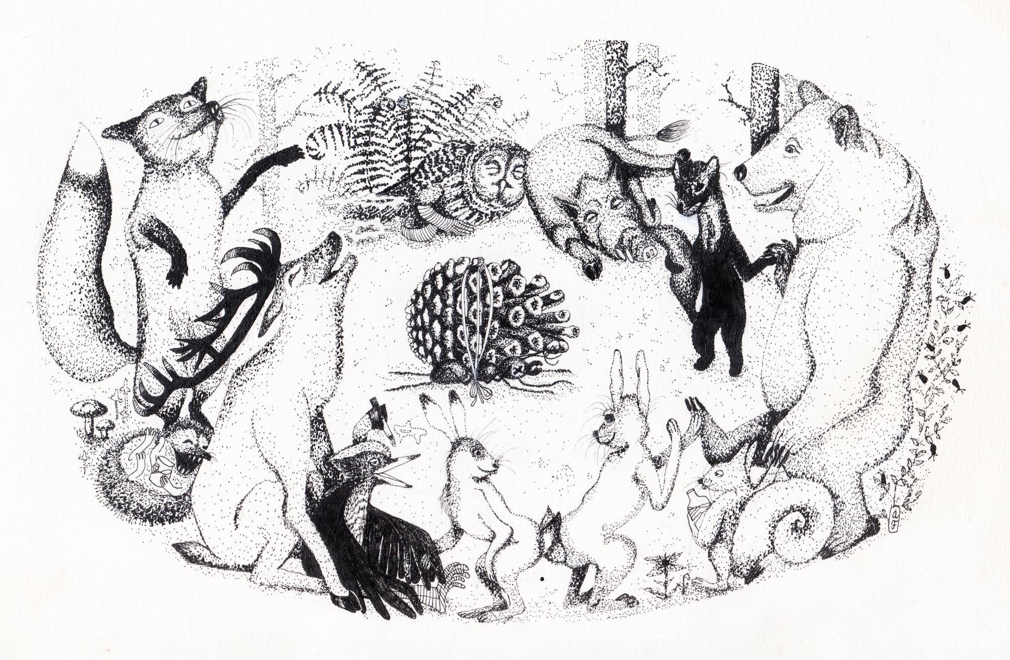 ilustrace Anna Fialová