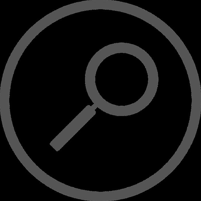 Co Češi Nejvíce Vyhledávali Na Googlu V Roce 2018? Olympiádu, Volby, Ledeckou, Mercuryho A Cuketu