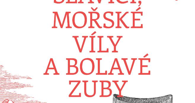 Brezinova Slavici Obálka