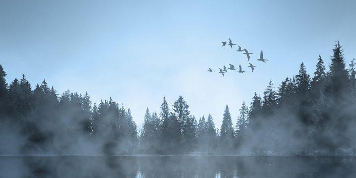 Foto: Alexandre Katsapov