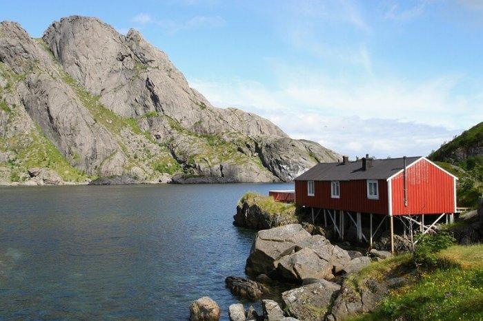 Norské Fjordy I Shetlandští Poníci V Centru Prahy