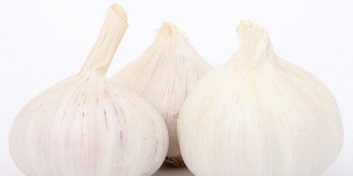 Garlic 1238337 1280