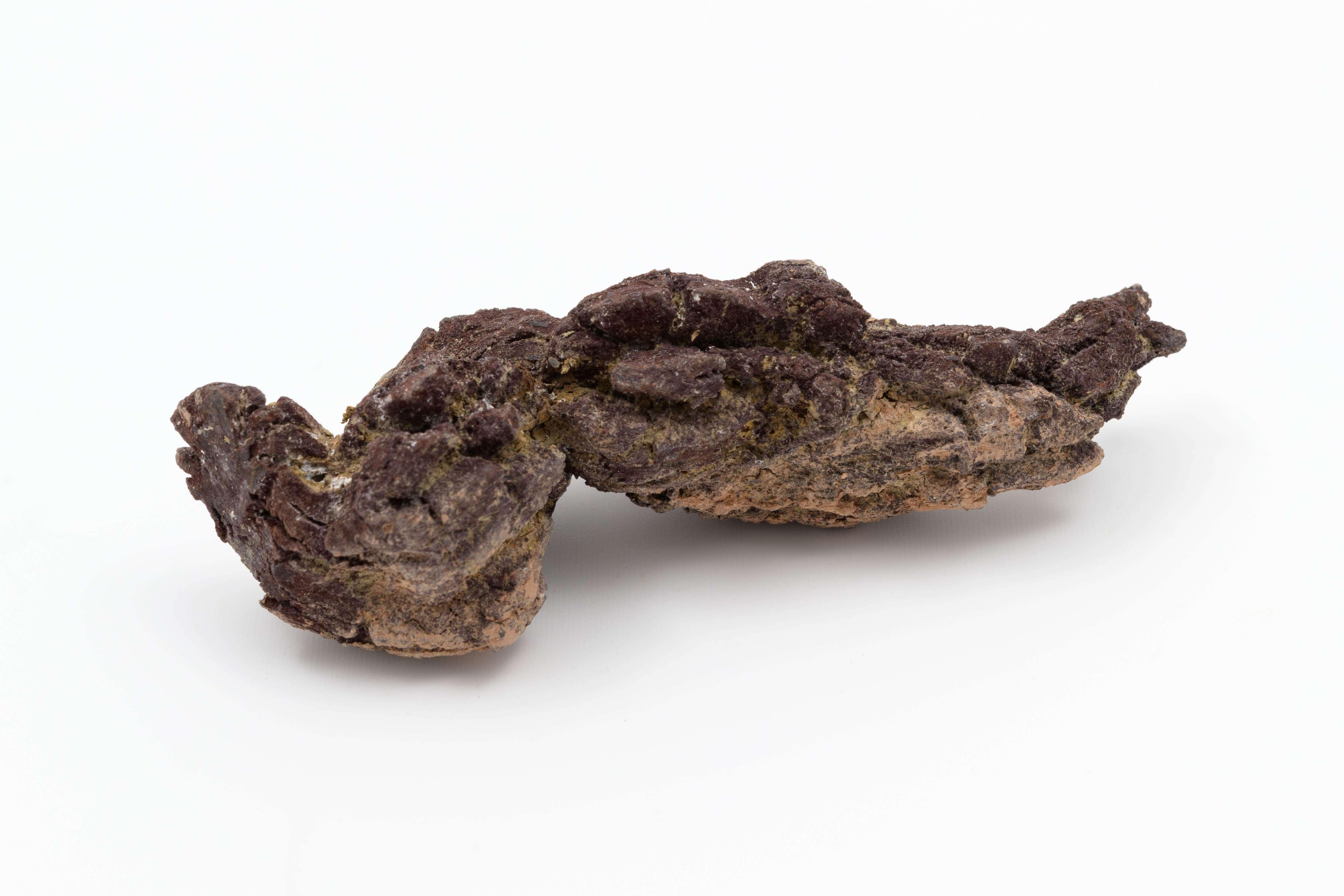 Madagaskarský koprolit