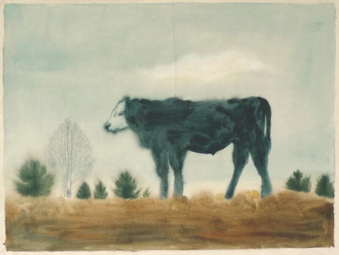 Tip Na Výstavu: Alžběta Skálová, Chůze V šeru