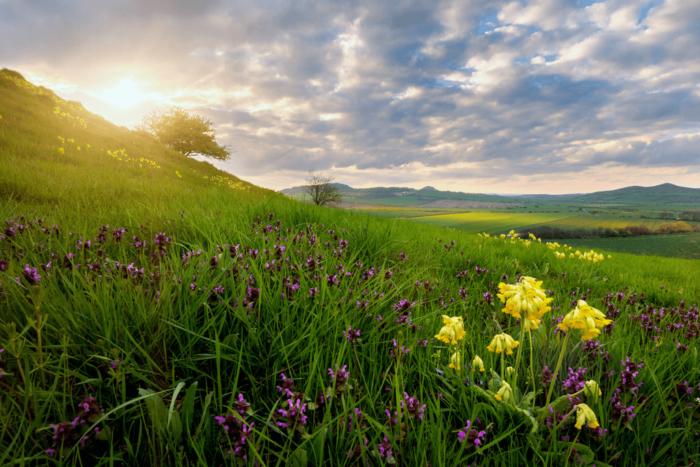 10 Tipů Na Skvělé Fotky Krajiny