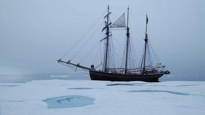 Arktické Filmy Na Severském Filmovém Podzimu