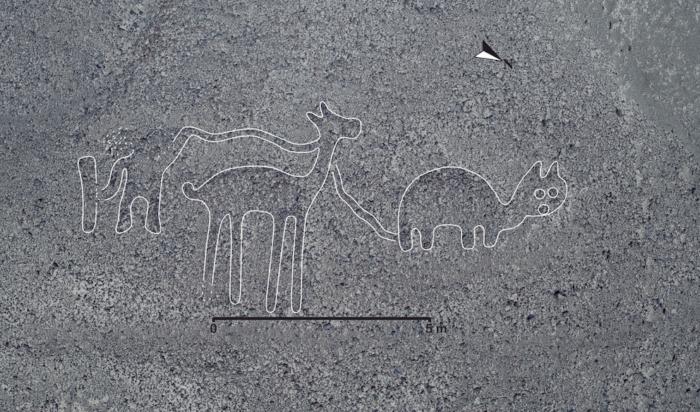 V Peru Se Našly Nové Geoglyfy. Koukněte Se Na úžasné Fotky Tajemných Obrazců.