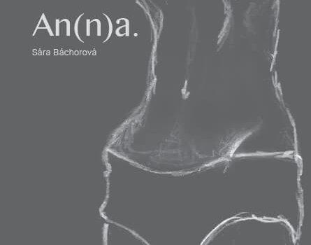 An(n)a_obálka Knihy