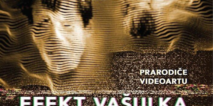 Vasulkaseffect Poster Jihlava