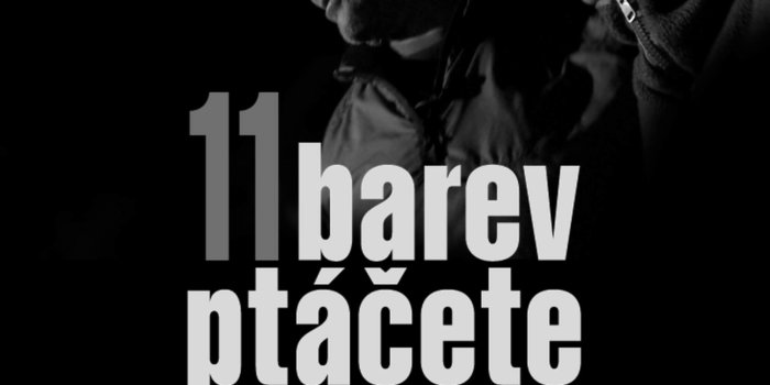 11 Barev Ptacete Vizual Final