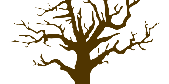 Illustration: Image By Prettysleepy1 From Pixabay