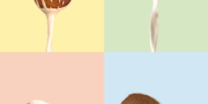 Dairy CZ 2 J