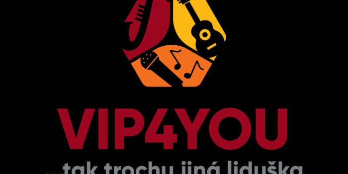 Logo Vip4you Square 02 Invert