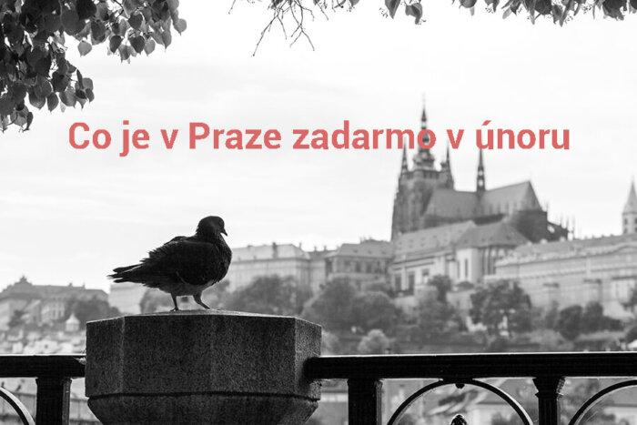 Co Je V Praze Zadarmo V únoru 2021