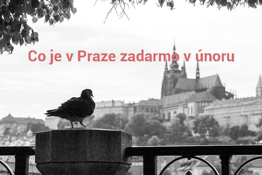 Photo by Dimitry Anikin on Unsplash