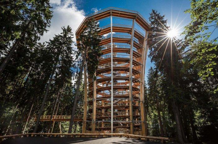 Krkonošská Stezka Opět Láká Na Cestu Korunami Stromů