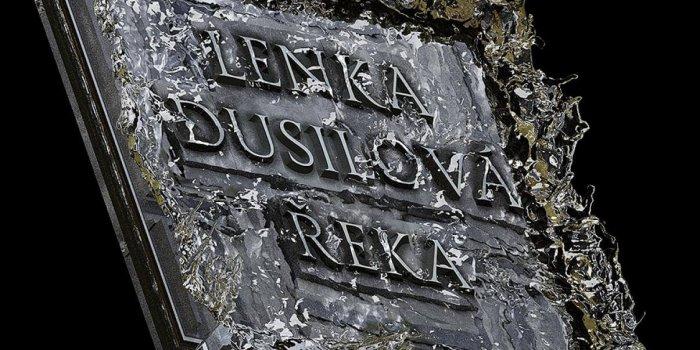 Ani 089 Lenka Dusilova Reka Cover 930×827 0