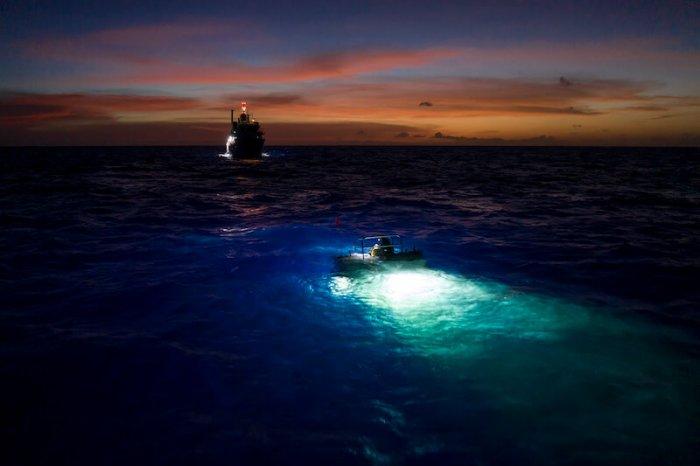 Fotky: Červen Na Discovery Patří Světovým Oceánům